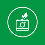 Wir von dc photodesign -Fotostudo Hanau arbeiten Umweltfreundlich durch Denken, Austauschen, Abwägen, Reduzieren, Weglassen.